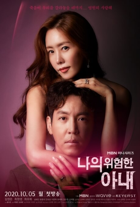 Download Drama Korea My Dangerous Wife Subtitle Indonesia
